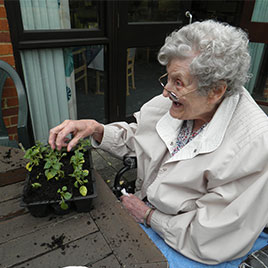 A lady with grey curly hair sat at a table smiling and potting some plants