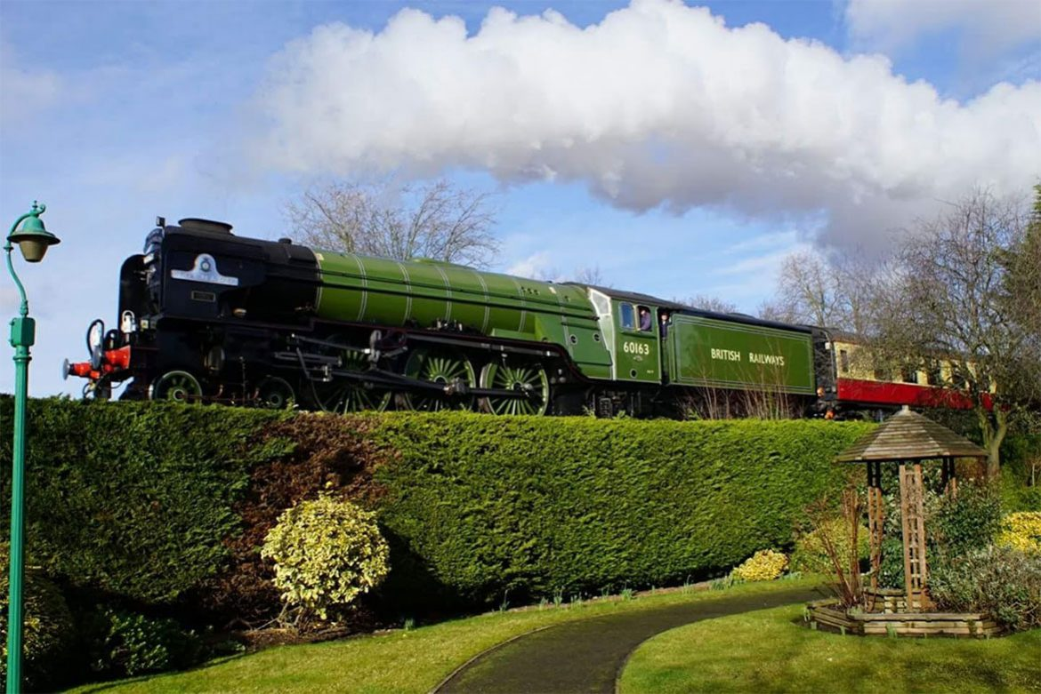 A green train passing a tall green hedge